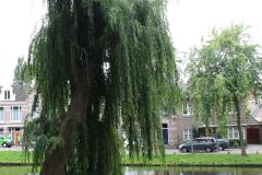 Alkmaar-Bolwerk-Oude-Stadswallen