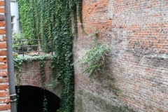 Brussel-1313-Binnenplaats-De-Gulden-Leeuw