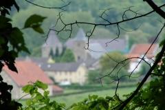 Sibbe-041-Doorkijk-naar-kasteel-Genhoes