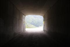 Vaujany-216-Koeientunnel