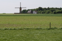 Genhout-120-Vergezicht-met-St-Hubertusmolen