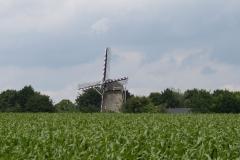 Margraten-038-Vergezicht-met-molen-Wolfshuis