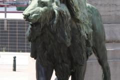 Congreskolom-Leeuw-2