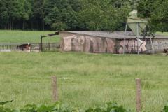 Houthem-St-Gerlach-192-Graffiti-in-een-weiland