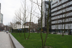 Rotterdam-308-West-Kruiskade