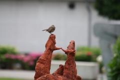 Artwalk-Hornerheide-309-Roodborstje-op-sculptuur-Duel