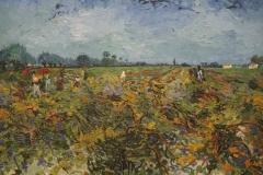 Vincent van Gogh - 1888 - De Groene Wijngaard 2
