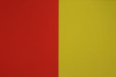 Ellsworth Kelly - 1966 - Serie van Vijf Schilderijen 1