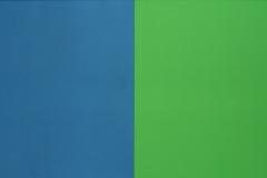 Ellsworth Kelly - 1966 - Serie van Vijf Schilderijen 2
