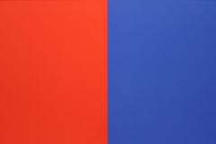 Ellsworth Kelly - 1966 - Serie van Vijf Schilderijen 3