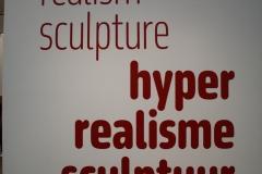 2018-04-11-Rotterdam-Kunsthal-006-Hyper-realisme-info