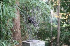 Agenore-Fabbri-1957-Groot-Insect-1