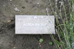 Brussel-0801-Mini-Europe-Naambord-Alden-Biesen-België