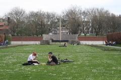 Rotterdam-287-Museumpark