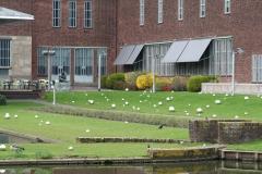 Rotterdam-289-Tuin-bij-Boymans-van-Beuningen