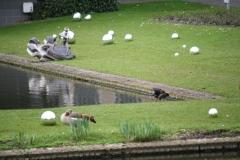 Rotterdam-291-Blinkende-ballen-in-museumtuin-Boymans-van-Beuningen