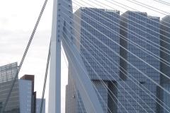 Rotterdam-049-Erasmusbrug-en-De-Rotterdam-149m