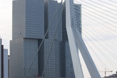 Rotterdam-060-De-Rotterdam-149m-Erasmusbrug